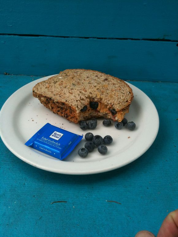PB/Blueberry sandwich, lunchtime