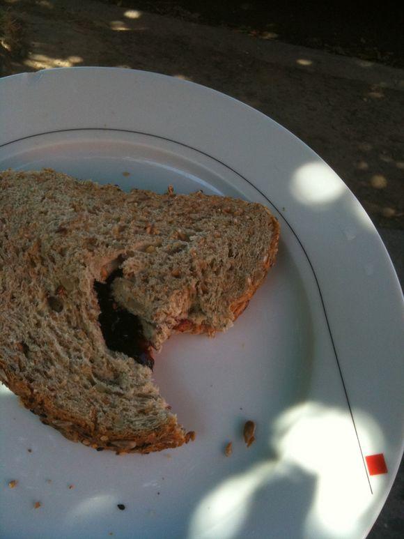 Pbj on daves goodseed, lunch standard